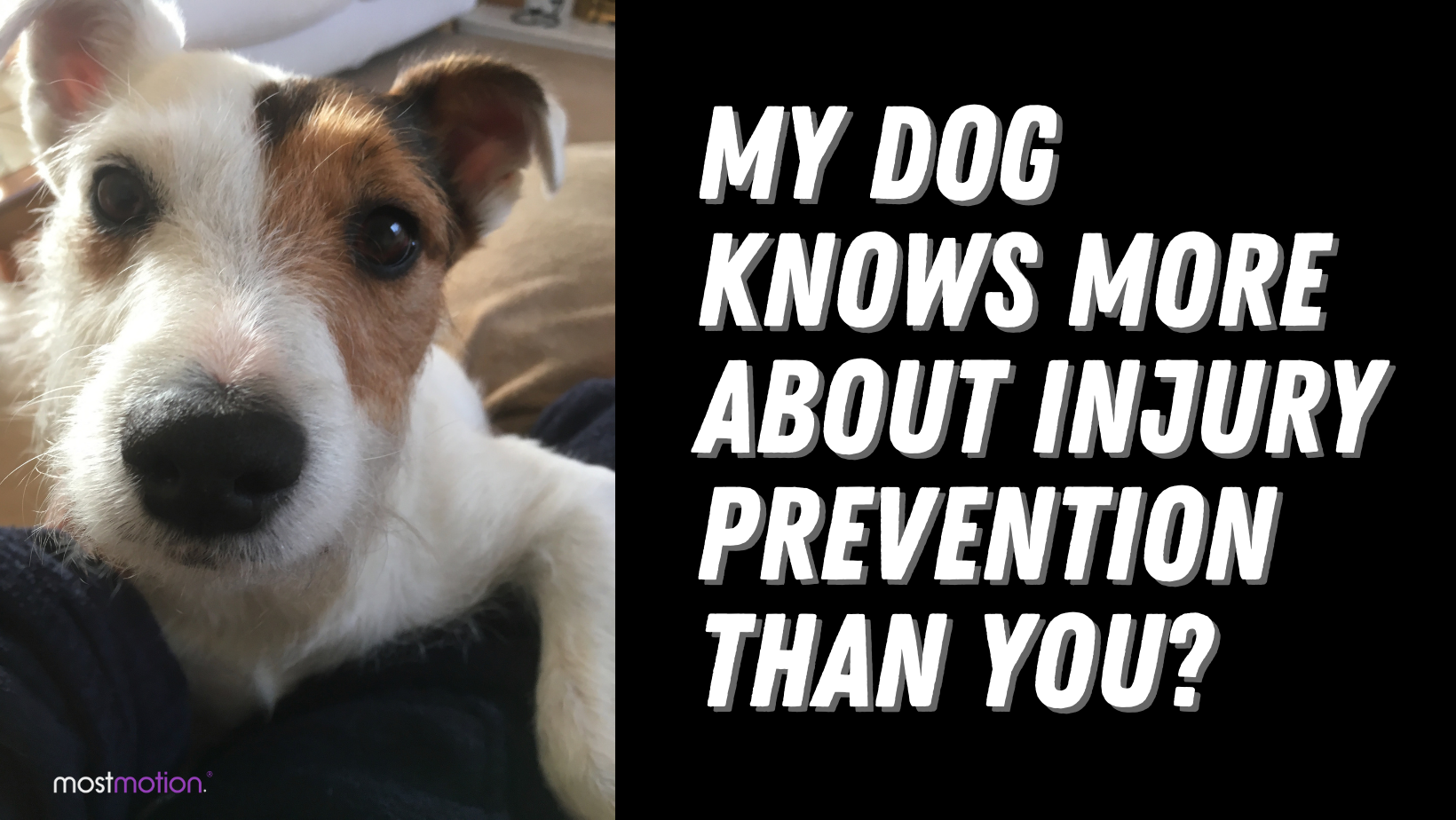 My Dog Knows More About Injury Prevention Than You?